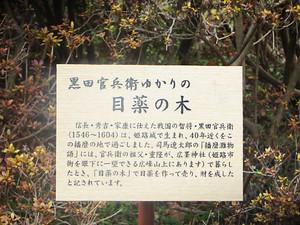 20140309_aoyama8_2