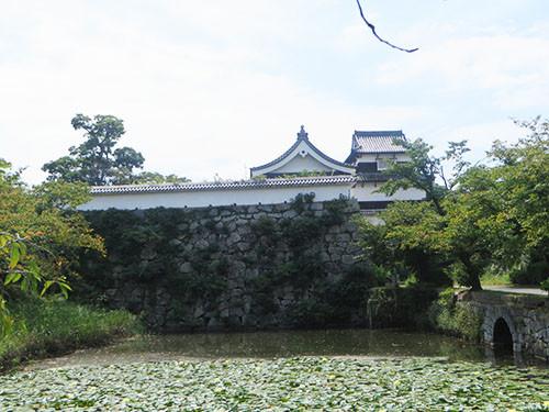 20140915_fuku10
