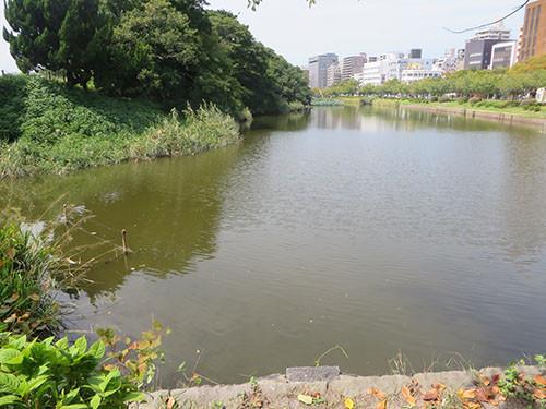 20140915_fuku11