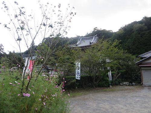 20140923_hanbeihaka4