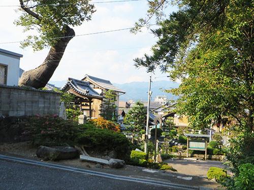 20140923_taruiizumi2