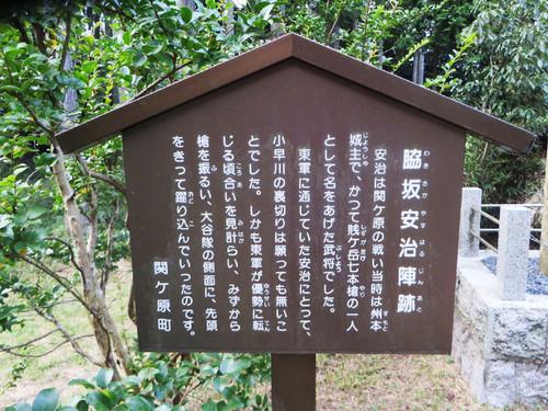 20140921_wakisaka_4