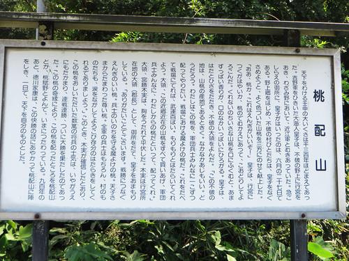 20140923_tokugawa_momo_4