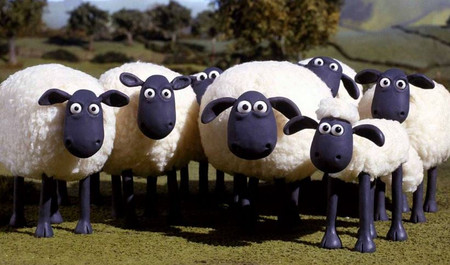 20150105_sheep