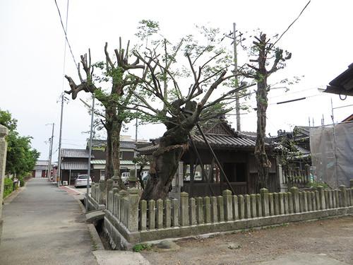 20150523_taishi_16