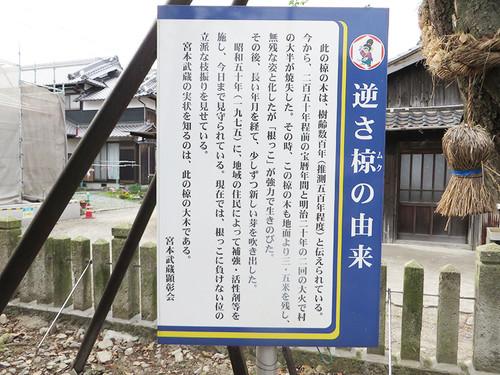 20150523_taishi_17