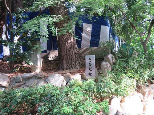 20160505_yasuishu11