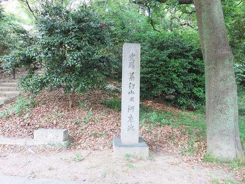 20160512_chausuyama4