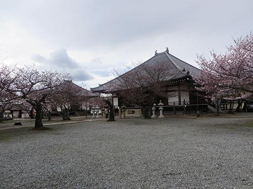 20140330_kakogawa5